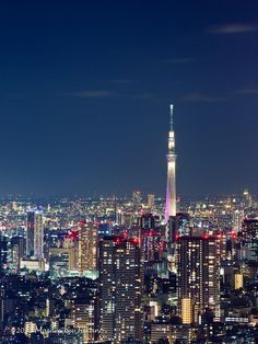 Tokio di notte (Giappone) / Tokyo by night (Japan) ☛ www.surus.org