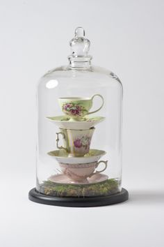 Delicate teacups, in a large cloche. Perfect for high tea decor, or even for Alice in Wonderland themes!  Photo credit to Soul Impressions Photography.  #teacups #cloche