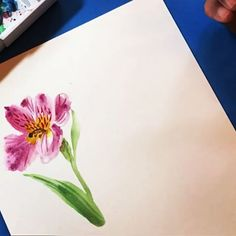 I've been out of town a lot this summer, so I'm looking forward to settling in for some honing skills time. I've been meaning to get back into practicing painting, which is my weakest discipline. I'm inspired by all the talented instagrammers who paint beautiful florals (you know who you are)! So excited for this week's #cb_paint #calligrabasics ! I just tried a quick watercolor sketch here of an Alstroemeria or Peruvian lily flower. And used today's sweet prompt from…