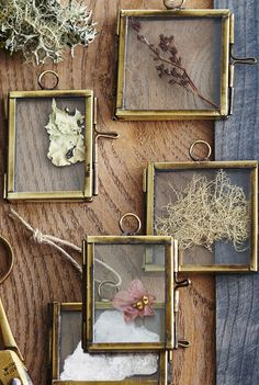 Diminutive, brass edged, hinged frames are sweet and charming when hung from the tree. Fill with favorite photos or snippets from nature. Also darling with a ha