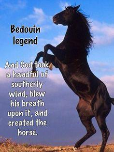 Bedouin Legend