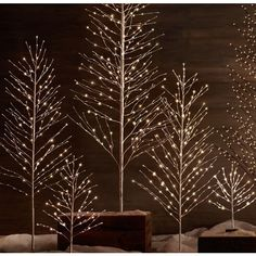 Starlit Trees - Snow ($49) ❤ liked on Polyvore featuring home, home decor, holiday decorations, christmas, backgrounds, black ornaments, black home decor, christmas holiday decor, black xmas ornaments and xmas ornaments