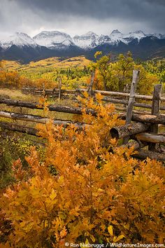 Autumn colors and the Sneffels Range in the San Juan Mountains, Colorado