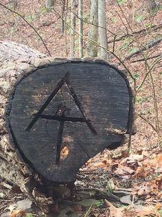 Suntory Time's 2017 Appalachian Trail Photos : On the AT near Bland VA - Sunday, March 26, 2017