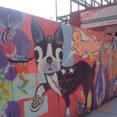 Boston Terrier Mural in Brooklyn last year. Too cute!