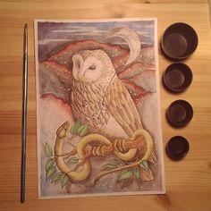 """Páči sa mi to: 51, komentáre: 2 – Natalia A.K.A cipana.natalia (@cipana.natalia) na Instagrame: """"Owel and snake/Sova a had A4, mixed media For print send me DM #illustrationoftheday #animal…"""""""