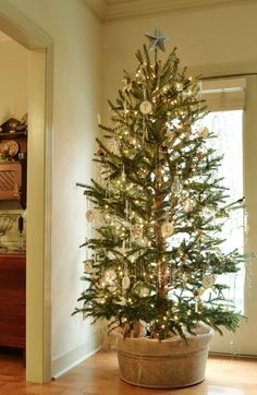 Learn how to trim your farm raised Christmas tree to look as if it has grown naturally | homeologymodernvintage.com