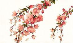 рисунок, сакура, декор, вишня