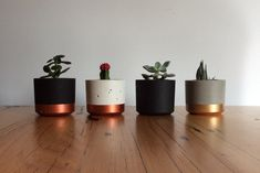 Large Concrete Planters - Australian Owned and Made