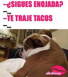 Los #tacos resolviendo problemas maritales desde tiempos inmemorables! Humor Mexicano, Dog Memes, Funny Memes, Jokes, Violin Online, Lets Taco Bout It, Workout Humor, Comedy Central, Cute Puppies