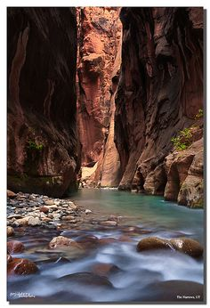 The Narrows classic view, Zion NP, UT by james wang photography - wangjam, via Flickr