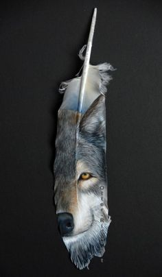Grey wolf on a feather, just imagine doing it