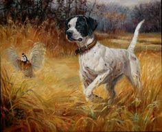 hunting dog | Pointer Flushing Quail | via wildsidestudio
