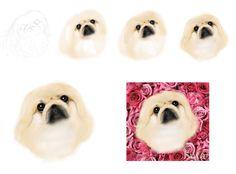 My works Pekingese portraits 愛犬ペキニーズと、 そのお友達の似顔絵・肖像画。