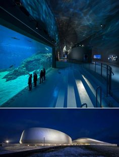 'The Blue Planet' Europe's largest aquarium in the town of Kastrup in Denmark, designed by local practice 3XN, opens.
