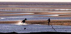 O cavalo e o homem, inverno uruguaio na charmosa Colônia do Sacramento.