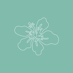#graphicdesign #hibiscus #summerart #hawaiian #webdesign #art #lineart #branddesign #instagramartist Web Design, Graphic Design, Instagram Artist, Hibiscus Flowers, Summer Art, Line Art, Flower Art, Design Projects, Hawaiian