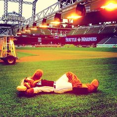 Moose getting his base tan for #Mariners #SpringTraining