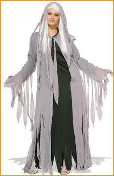 Womens Spirit Ghost Costume - This spooky spirit costume includes a hooded gauze coat, long costume dress and long white wig Ghost Halloween Costume, Ghost Costumes, Theme Halloween, Halloween Fancy Dress, Halloween Outfits, Adult Costumes, Costumes For Women, Movie Costumes, Costume Shop