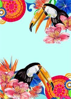 #toucans #birds #brazil Copyright © Victoria Stroud 2014