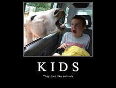 Kid terrified by donkey xD Sofa King, Demotivational Posters, Like Animals, Pictures Images, Children, Kids, Haha, Humor, Funny