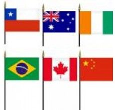 FIFA world cup mini flags for qualified countries