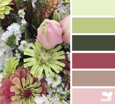 Flora Hues - http://design-seeds.com/index.php/home/entry/flora-hues46