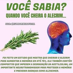 Health And Nutrition, Health Fitness, Dr Web, Plants Are Friends, Love Tips, Lets Do It, Body And Soul, Green Life, Natural Herbs
