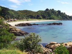 Scorching Bay, Wellington, NZ.