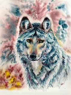 Blue wolf, watercolor, animal portrait by artist Giulia Gatti Watercolor And Ink, Watercolor Paintings, Kittens Cutest, Pet Portraits, Bald Eagle, Watercolors, Wolf, Cats, Gallery