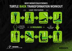 Back casthenics workout