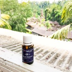 WEDNESDAY WELLNESS: MY NON-TOXIC YOGA ESSENTIALS WITH YOUNG LIVING