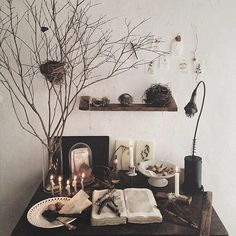 witchy inspiration