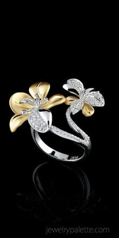Master Exclusive   Ring   484
