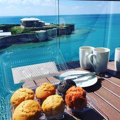 Cakes by the ocean.  #wearebda #sun #cup #cupcakes #cupcake #cupcakelove #cake #cakes #cakebytheocean #cakeboss #bermuda #bda #bday #rum #coffee #winning #manitoba by aceadjuster