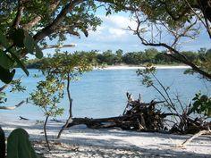 Wiggins Pass at Barefoot Beach - Naples, Florida