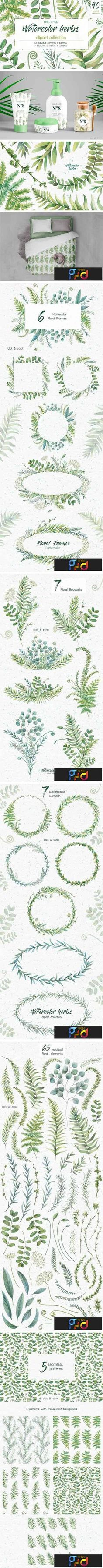 1706094 Watercolor Herbs Clipart Collection 1818264