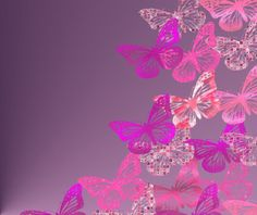 flovers with  annimated butterflies on them | animated desktop wallpaper butterfly wallpaper wallpaper design ...