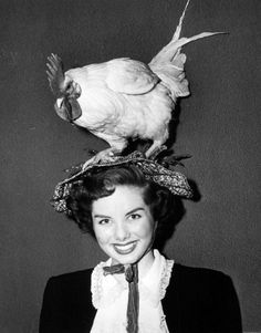 The Chicken Hat Collection #2