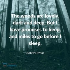 The woods are lovely, dark and deep. But I have promises to keep, and miles to go before I sleep. Robert Frost