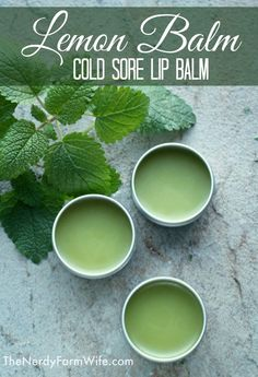 Try this effective DIY lip balm recipe next time a cold sore comes around! It features lemon balm - a potent antiviral that's been shown in studies to improve cold sore symptoms & shorten the duration of time to heal.: