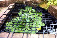 pond cover idea