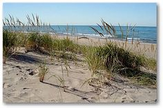 The Dunes in Michigan City Indiana