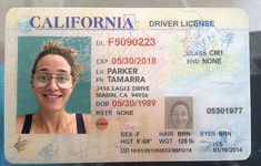 SNAIL MAIL FEATURE: The California Department of Motor Vehicle Writes me Back! — Andrea Schmidt   Design & Web Writing