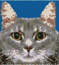 Tabby Cat Peyote Pattern by Rita Sova at Bead-Patterns.com