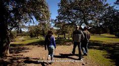 Descubriendo los secretos del jamón de Valle de Los Pedroches (Córdoba)