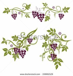 Vector set, vine leaves with grapes - stock vector