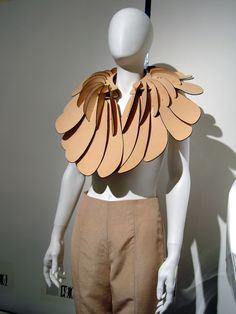 Collars and ruffs in fashion, photography and design art, leather collar