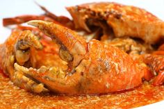 Chilli crab recipe with Singapore style brings a yummy spicy crab dish with sour and spicy sauce, which stimulates anyone's taste. Shellfish Recipes, Crab Recipes, Sauce Recipes, Asian Recipes, Easter Recipes, Lobster Stew, Crab And Lobster, Pescatarian Recipes, Vegetarian Recipes