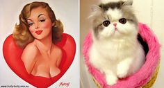 Cats That Pose Like Pin Up Girls (17 pics) | Bored Panda